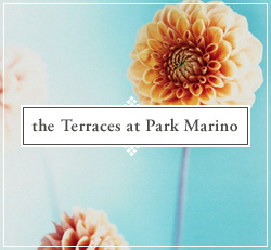 Terraces at Park Marino, The