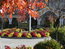 Victoria Mews Assisted Living