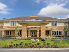 Arbor Terrace Naperville